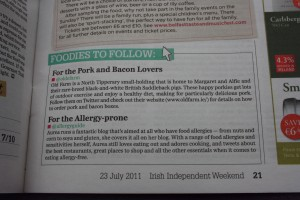 Article from Irish Independent 23rd July