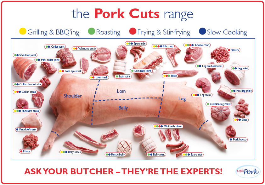 pork cuts range poster