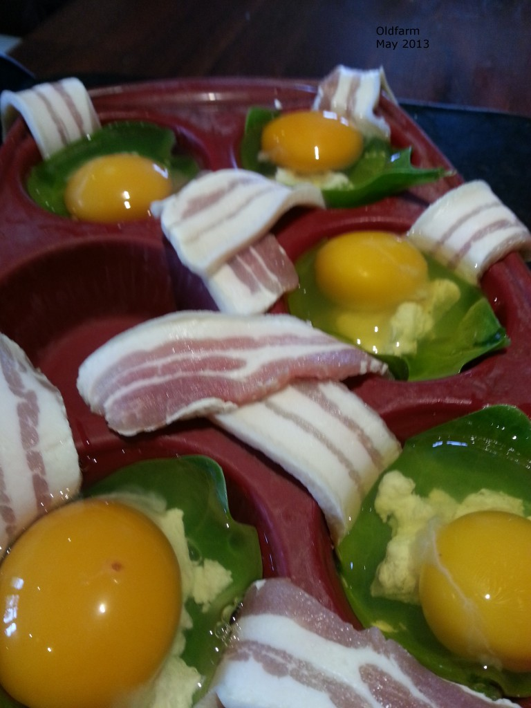 Eggs, spinach, goat's cheese and rashers
